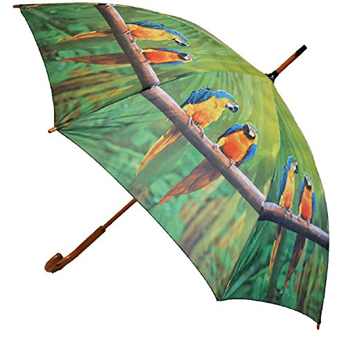 Regenschirm Aras mit Holzgriff, Automatikschirm, Stockschirm, Schirm, Tiere Papageien Vogel Vögel