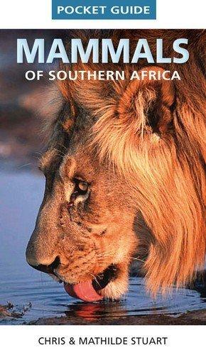 Pocket Guide Mammals of Southern Africa (Pocket Guides (Struik)) by Stuart, Chris, Stuart, Mathilde (2011) Paperback