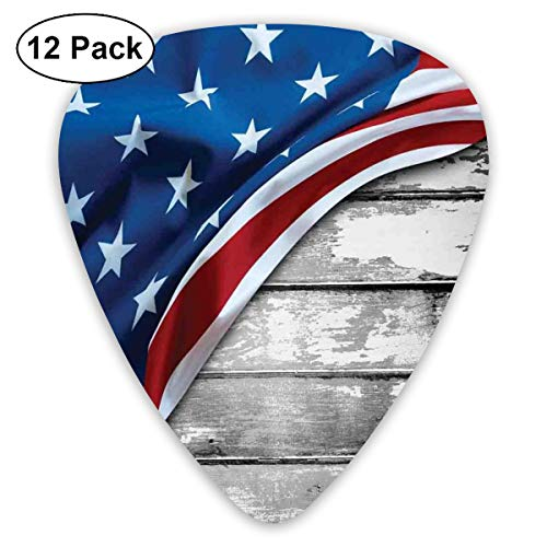 Guitar Picks 12-Pack,Close Up Design Flag Over Antique Rustic Rippled Board Federal Country - Federal Triangle