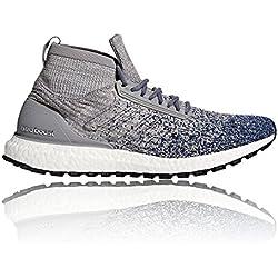 Adidas Ultraboost All Terrain, Zapatillas de Trail Running para Hombre, Gris (Gritre/Gridos/Indnob 000), 44 2/3 EU