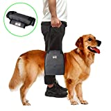 pupouse Hund Lift Harness Sling mit Griff für Hunde-Hilfe für Rehabilitation, Gelenkverletzungen, Mobilität und Recovery Hund Lift Harness Sling mit Griff für Hunde-Hilfe für Rehabilitation, Gelenkverletzungen, Mobilität und Recovery