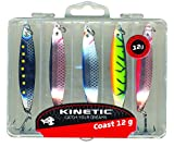 KINETIC 5er Pack Jebo Herring - Meerforellenblinker (12g)