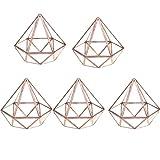 Baoblaze Glas klar Geometrische Terrarium Sukkulente Terrarium Diamant Form Set/5Stück