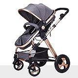 ZXLDP Kinderwägen Baby-Pushchair / Two-Way kann sitzen Ultra-Light Falten Falten Vier-Wheeled Baby Trolley Champagner Gold Farbe Prams ( Farbe : Grau )