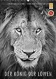 FineArt in Black and White: Der König der Löwen (Wandkalender 2018 DIN A2 hoch): Für diesen wunderschönen Kalender hat Ingo Gerlach besten Löwenbilder ... [Kalender] [Apr 01, 2017] Gerlach, Ingo