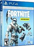 Fortnite Deep Frost Bundle for PlayStation 4 [USA]