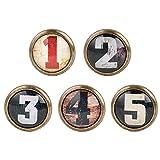 Sharplace 5pcs Vintage Bouton de Porte Cabinet Knob Tiroir Tirer Poignée Meubles...