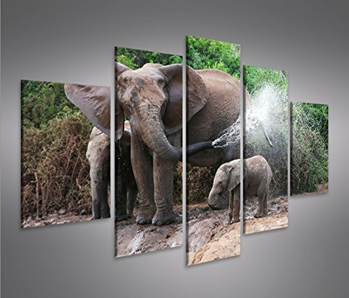Cuadro en Lienzo Elefanten V3 mit Elefanten Baby MF Impresión sobre lienzo...