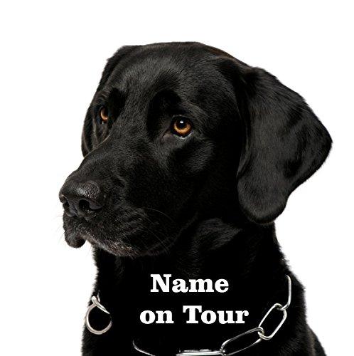 Hundeaufkleber Labrador schwarz (Hundefutter Aufkleber)