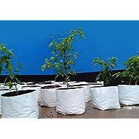 Rochfern Grow Bag for Plants Large Pack of 15,Virgin Polyethylene, Size (24 x 24 x 40 Cms.)