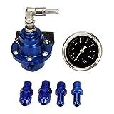 Auto Benzindruckregler - TOOGOO(R)Auto Kraftstoff Manometer Einstellbarer Benzindruckregler Titan