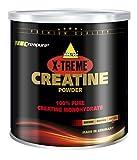 X-Treme Creatine, 500g Dose