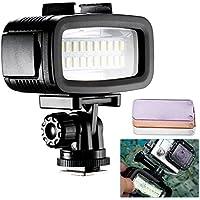 Neewer 20 LED 700LM Flash Lampe Réglable et Étanche Jusqu'à 40m Sous-marin Rempli Lumière de Nuit avec 3 Filtre de Couleur (Blanc, Orange, Violet) Pour Gopro Hero 4 3+ Action et Tous DSLR Caméra