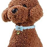 Nikgic 1 * 27 cm Red Bow Bow Hundehalsband Hohe Qualität Pu-Leder Hundehalsband Mode Hundehalsband Haustier Hundehalsband