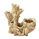 Fenteer Kreative Baumwurzel Mikro Landschaft Sukkulente Topflappen Gartengestaltung, mit Kleinen Abflusslöchern im Boden - # 5