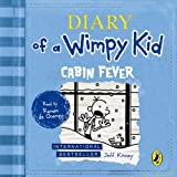 Diary of a Wimpy Kid: Cabin Fever: Book 6