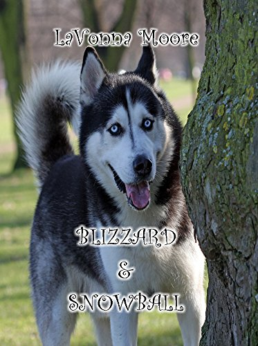 ebook: Blizzard & Snowball (B01BK6PS3Q)