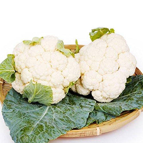 Blumenkohlsamen Brassica Oleracea Samen Brokkoli Samen Bio Delicious White 100PCS Gartengemüse