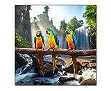 PB Art - Papagei 80x80cm als Kunstdruck auf Leinwand und Holzkeilrahmen - Beste Qualität, handgefertigt in Deutschland!