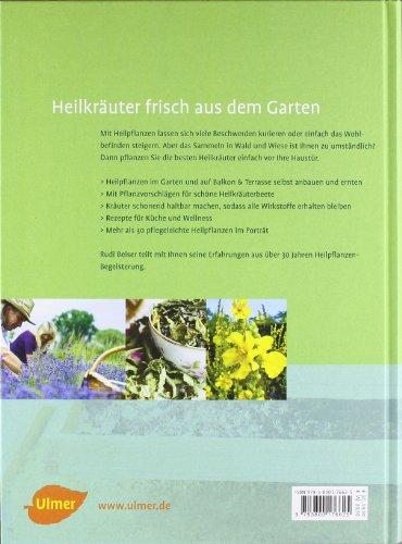 Mein Heilpflanzengarten: Gesunde Kräuter pflanzen, ernten und anwenden - 2