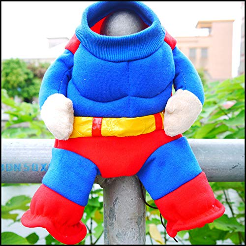 Superman Hund Halloween Outfit -