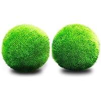 JIALONGZI Bola de Musgo para Acuario Forma de Bola, Ideal para Crecimiento de Algas