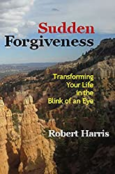 Sudden Forgiveness: Transforming Your Life in the Blink of an Eye (English Edition)