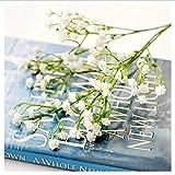 jjdp Fleur Artificielle 1 Pièce Décoration Rustique Fleur Artificielle Interdispersion Man Tian Xing Fleur en Plastique Décoration pour Mariage