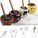 F Fabsouk 2B Environment Friendly Plantable Pencil By Fabsouktm With Seeds (Pack Of 10) With Box, Pots Not Included