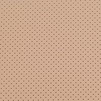 Thermoplastisches Schienenmaterial | EasyThermoForm | Modellage Perfo | perforiert | verschiedene Dicken und Farben... preisvergleich bei billige-tabletten.eu