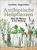 Antibiotische Heilpflanzen: Über 50 Pflanzen und ihre Wirkung