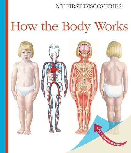 How the Body Works (My First Discoveries) por Sylvaine Peyrols