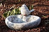 Vogeltränke Herz mit Steinfigur Vogel - 2