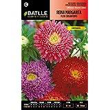 Semillas Batlle 092954BOLS - Reina Margarita Flor Crisantemo variada