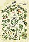 Un potager bio dans la maison: Guide d'éco-jardinage en intérieur par Bonte