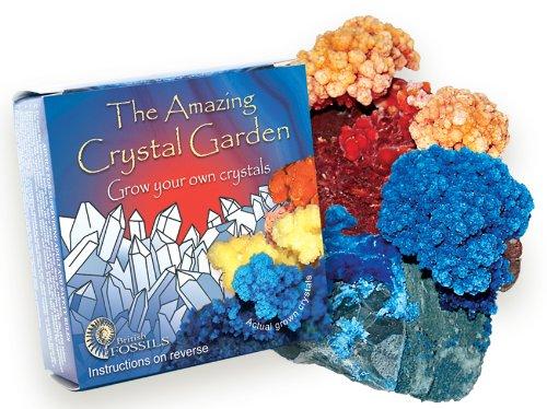 Wachsen Sie Ihren eigenen Kristallgarten - kaufen Sie eins erhalten ein frei!