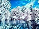 XDXART Ölmal-Set für Erwachsene, Anfänger, 40,6 x 50,8 cm, Schnee-Muster, Zeichnen mit Pinsel, Weihnachtsdekoration, Geschenke Frame