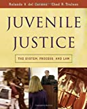 Juvenile Justice: The System, Process and Law (Available Titles CengageNOW) by Rolando V. del Carmen (2005-07-07)