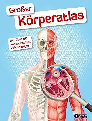 Großer Körperatlas: Eine faszinierende Reise durch unseren Körper (Anatomie Skelett Atlas)