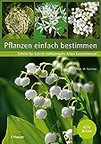 Pflanzen einfach bestimmen: Schritt für Schritt einheimische Arten kennenlernen - Peter M. Kammer