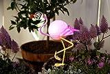Kamaca Solar LED Flamingo–26cm x 23cm, Outdoor Geeignet, Metall Lackiert und Eine Kugel aus Kunststoff–mit Solarpanel, für Innen und Außen–Flamenco Metall Shop