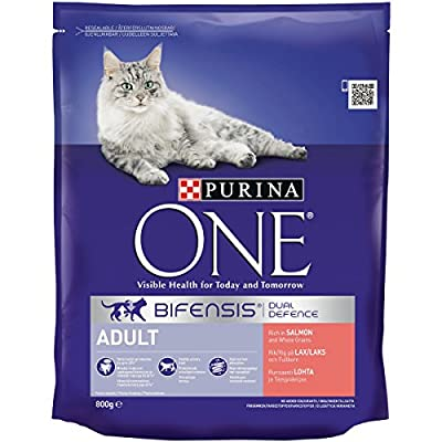 Purina One Indoor Adult Dry Cat Food with Rich