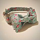 Little dickies die Rose–Hundehalsband und Fliege (Klein)