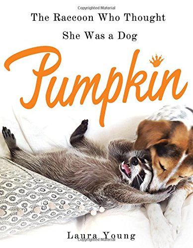 Pumpkin: The Raccoon Who Thought She Was a Dog por Laura Young