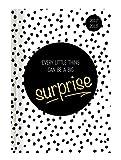 Collegetimer Surprise 2017/2018 - Schülerkalender A5 - Weekly - 224 Seiten
