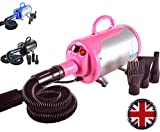 2800W Stepless Speed Dog Cat Pet Grooming Hair Dryer Hairdryer Blaster Blower (Pink)