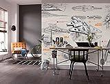 Komar Papel Pintado Star Wars Blueprints, diseño de Star Wars, Multicolor, 8Piezas