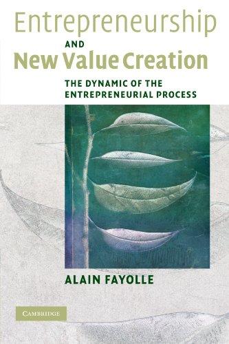 Entrepreneurship and New Value Creation Paperback
