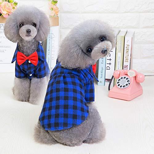 BZAHW Pet Kleidung 2019 Neue Hundekariertes Hemd Europa und den Vereinigten Staaten Baumwolle Anzug Haustierkleidung (Color : Blue Plaid, Size : XL) -