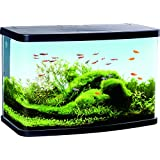 Duvo + Aquarium Panorama VS60Filter für Aquaristik schwarz 61x 30,6x 39,8cm